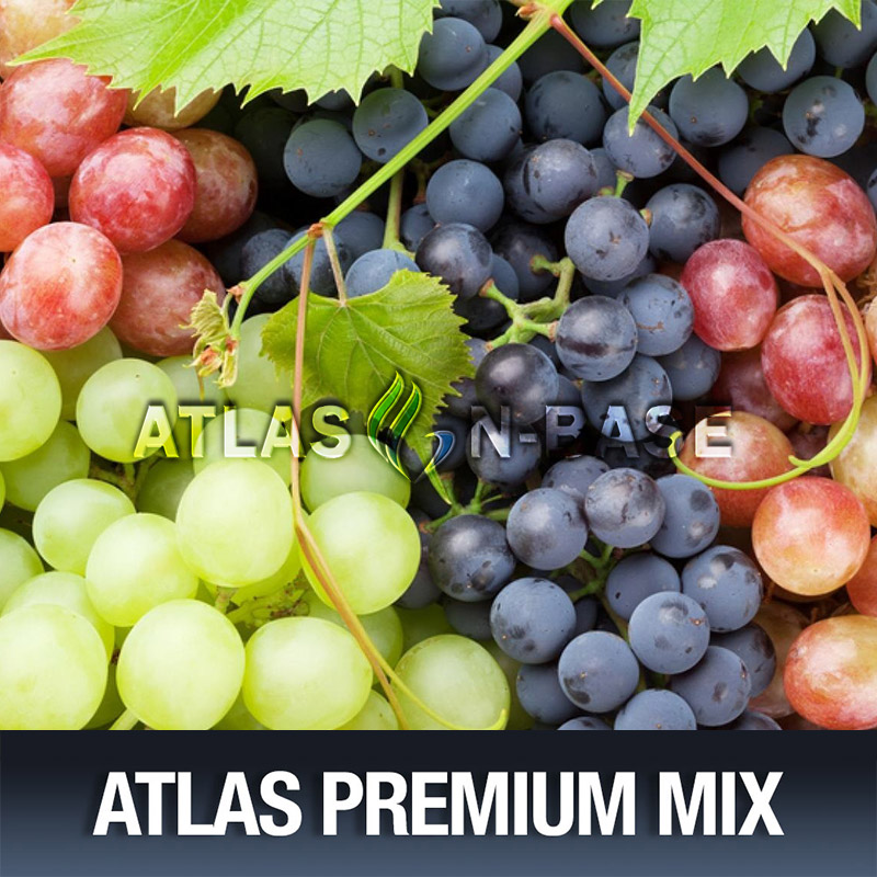 Atlas-Atlas Mix ASAP Grape - 10ml Mix Aroma