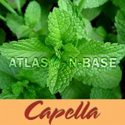 Capella Spearmint - 10 ml Dolum Aroma